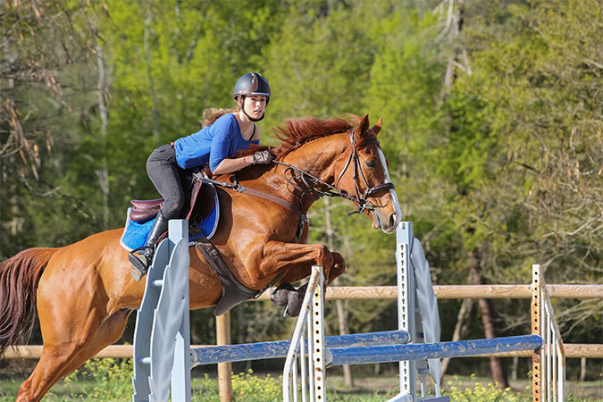 Supplements for performance horses